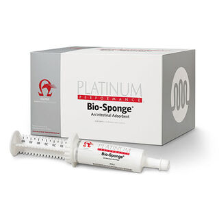 Bio-Sponge® Paste (60cc Syringe)
