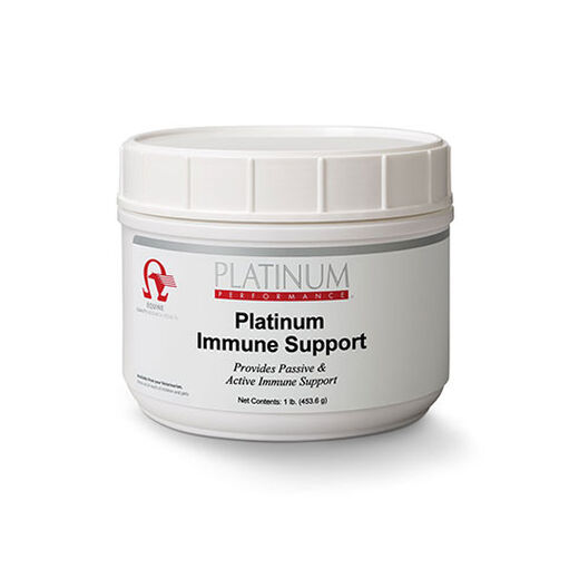 Horse Immune Supplements