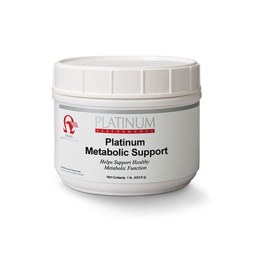 Equine Metabolic Support for Horses