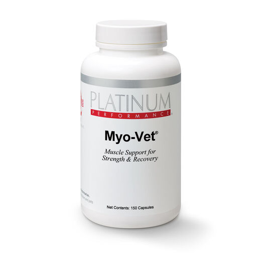 Dog Muscle Supplements