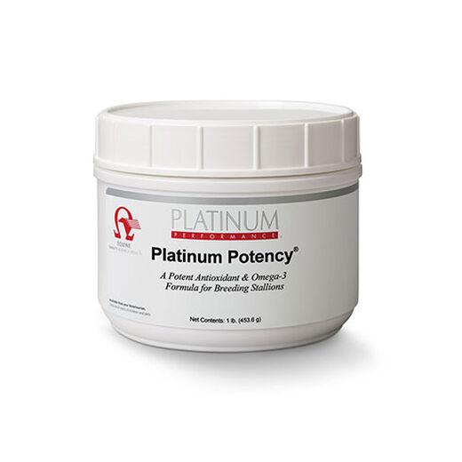 Platinum Potency® for breeding stallions