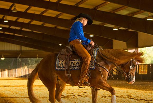 riding horse in barn