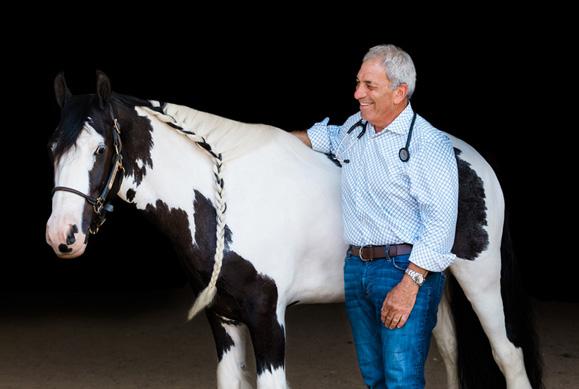 veterinarian standing with horse