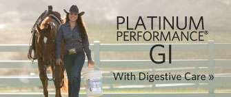 Platinum Performance GI - With Digestive Care